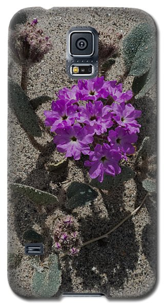 Galaxy S5 Case featuring the photograph Violets In The Sand by Jeremy McKay