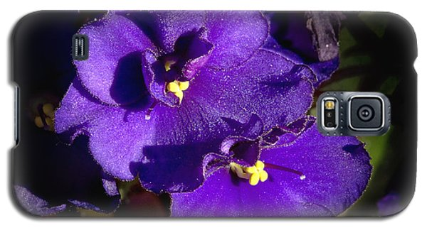 Galaxy S5 Case featuring the photograph Violets by Phyllis Denton