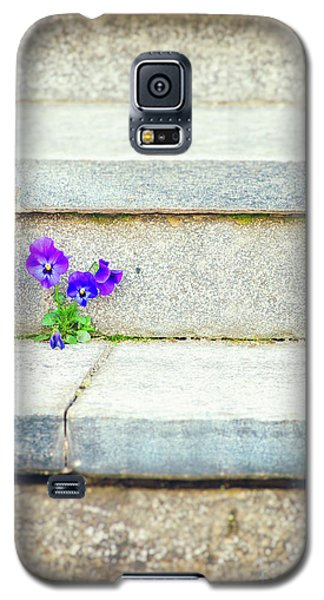 Galaxy S5 Case featuring the photograph Violets    by Silvia Ganora