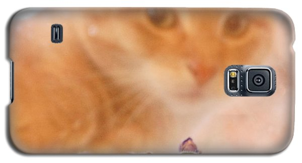 Violets With Cat Galaxy S5 Case