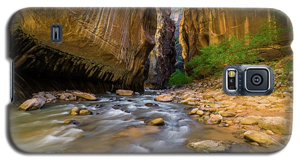 Virgin River - Zion National Park Galaxy S5 Case