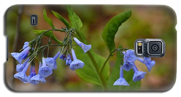 Galaxy S5 Case featuring the photograph Virginia Bluebells by Randy Bodkins