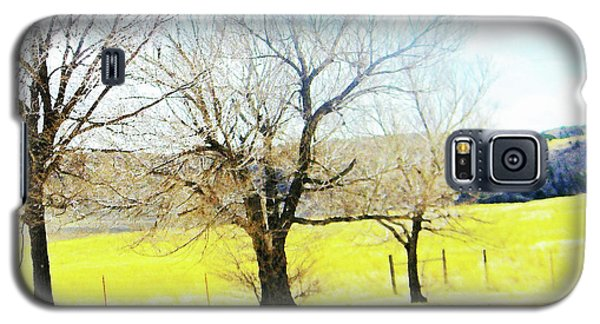 Galaxy S5 Case featuring the photograph Virginia Dale-three Trees by Lenore Senior