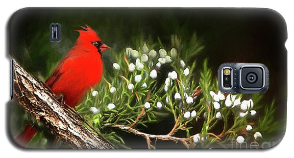 Galaxy S5 Case featuring the photograph Virginia State Bird by Darren Fisher