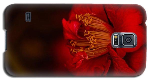 Virtuoso  Galaxy S5 Case