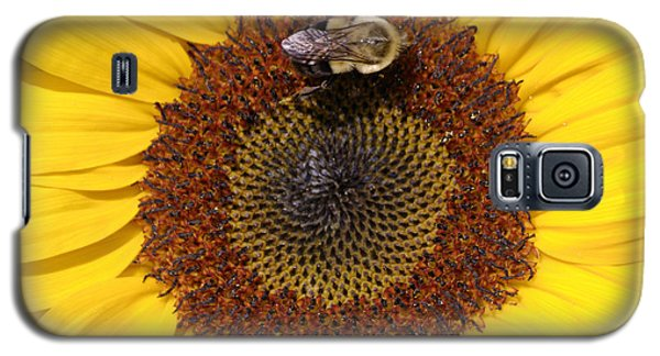 Vision Of Summer Galaxy S5 Case