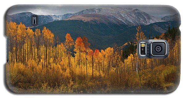 Vivid Autumn Aspen And Mountain Landscape Galaxy S5 Case