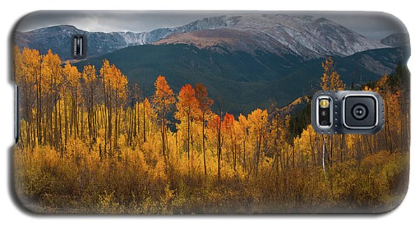 Vivid Autumn Aspen And Mountain Landscape Galaxy S5 Case