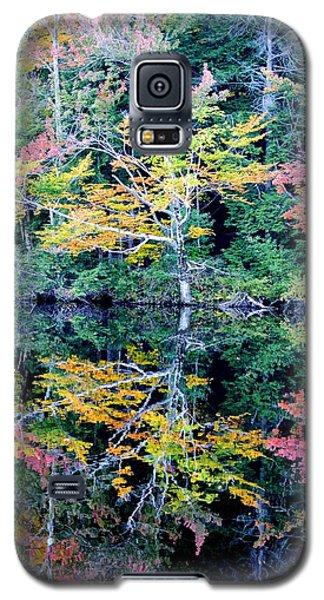 Vivid Fall Reflection Galaxy S5 Case