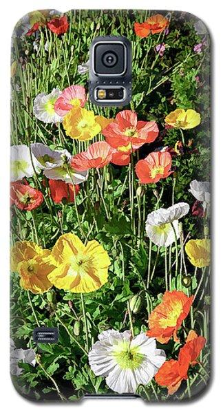 Vivid Mix Of California Poppies Galaxy S5 Case