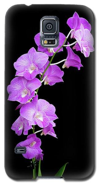 Vivid Purple Orchids Galaxy S5 Case