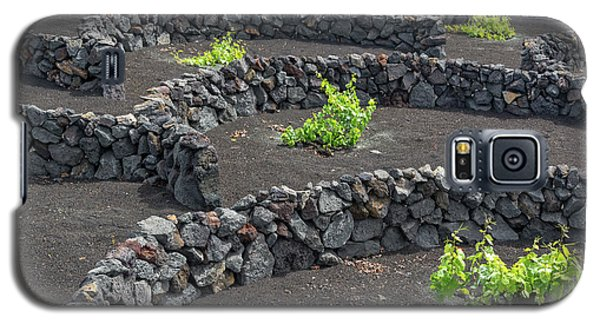Canary Galaxy S5 Case - Volcanic Vineyards by Delphimages Photo Creations