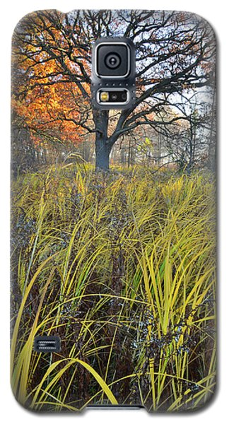 Galaxy S5 Case featuring the photograph Volo Bog Natural Area by Ray Mathis