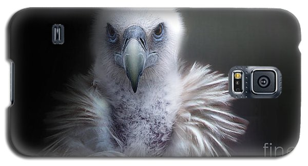 Galaxy S5 Case featuring the photograph Vulture 2 by Christine Sponchia