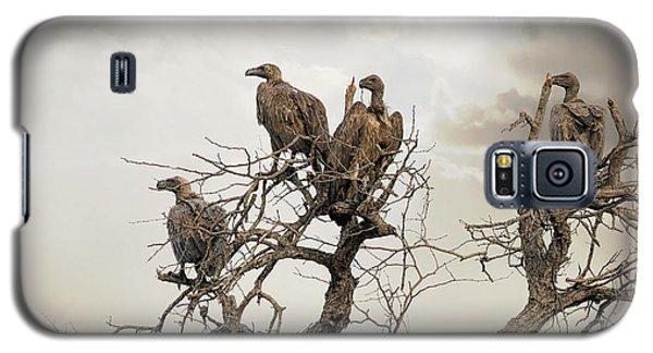 Vultures In A Dead Tree.  Galaxy S5 Case by Jane Rix