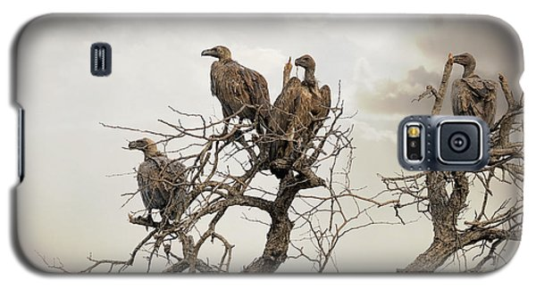 Vultures In A Dead Tree.  Galaxy S5 Case