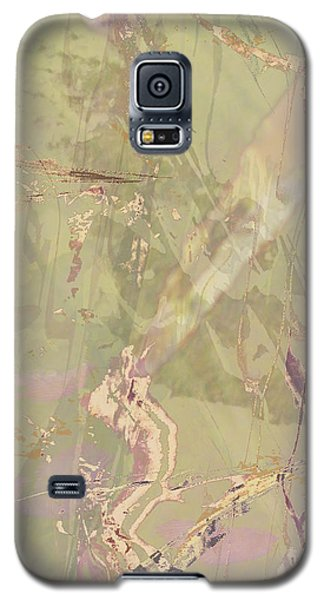 Wabi Sabi Ikebana Revisited Shabby 1 Galaxy S5 Case