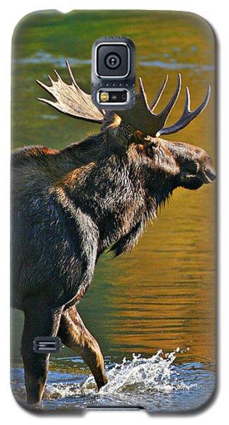 Wading Moose Galaxy S5 Case
