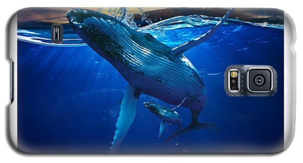 Whale Watching Art Galaxy S5 Case