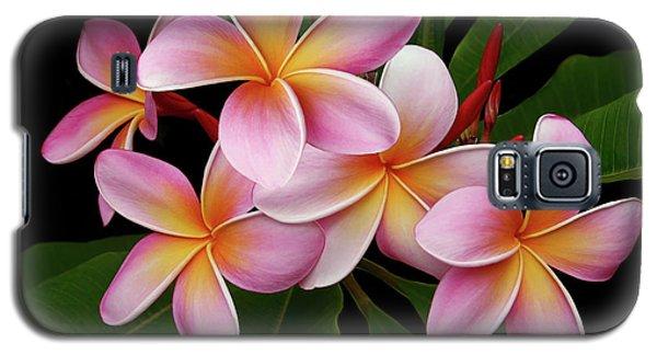 Wailua Sweet Love Texture Galaxy S5 Case