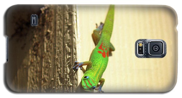 Waimea Gecko Galaxy S5 Case