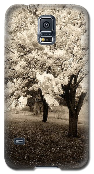 Waiting For Sunday - Holmdel Park Galaxy S5 Case
