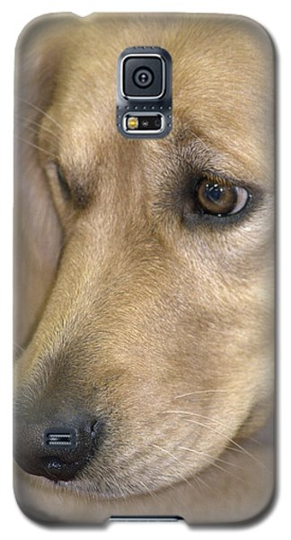 Waiting For You Galaxy S5 Case