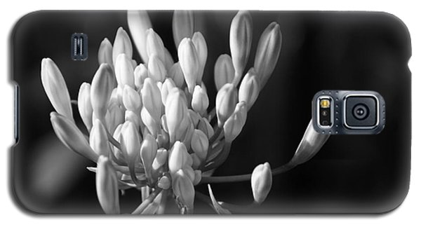 Waiting To Blossom Into Beauty - Bw Galaxy S5 Case