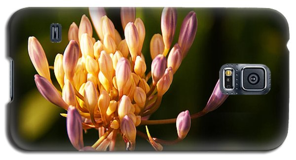 Waiting To Blossom Into Beauty Galaxy S5 Case
