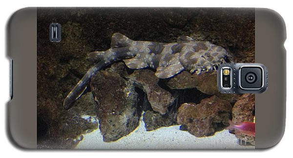 Waiting To Eat You - Spotted Wobbegong Shark Galaxy S5 Case
