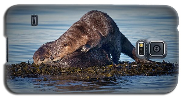 Galaxy S5 Case featuring the photograph Wake Up by Randy Hall