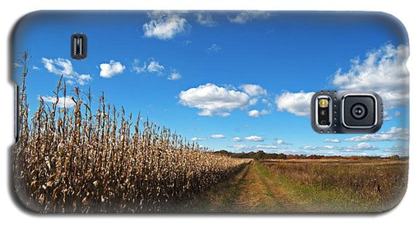 Galaxy S5 Case featuring the photograph Walk By The Corn Field by Elsa Marie Santoro