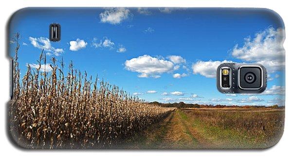 Walk By The Corn Field Galaxy S5 Case by Elsa Marie Santoro