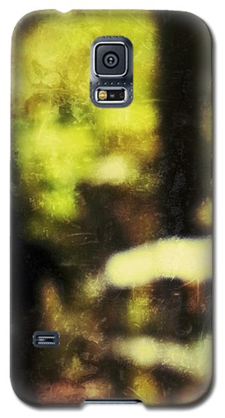 Walk In The Park Galaxy S5 Case