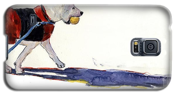Walk In The Park Galaxy S5 Case by Molly Poole