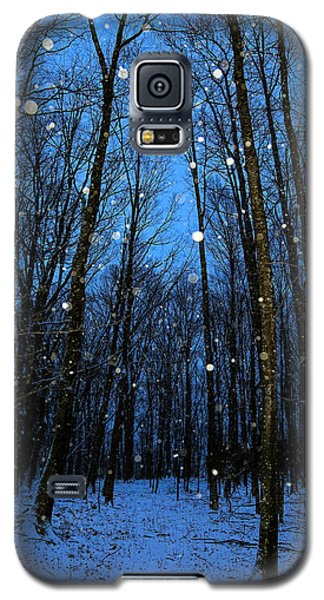 Walk In The Snowy Woods Galaxy S5 Case
