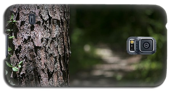Galaxy S5 Case featuring the photograph Walk In The Woods by Andrea Silies