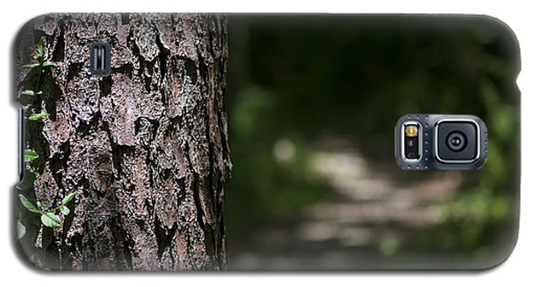 Walk In The Woods Galaxy S5 Case