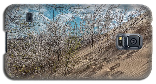 Galaxy S5 Case featuring the photograph Walk The Path In The Dunes  by John McGraw
