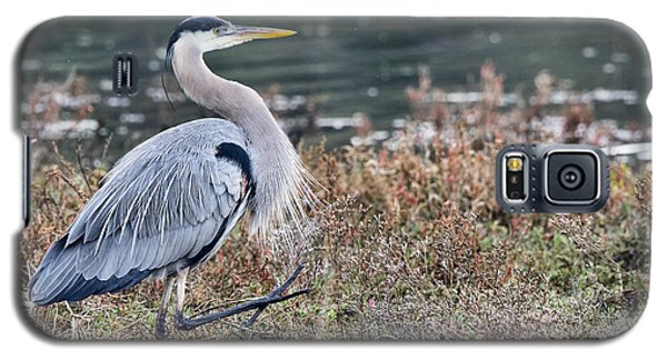 Galaxy S5 Case featuring the photograph Walk This Way by Eddie Yerkish