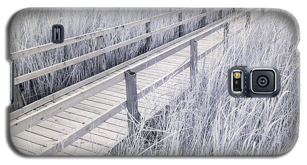 Walk Through The Marsh Galaxy S5 Case