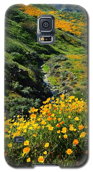 Galaxy S5 Case featuring the photograph Walker Canyon Vista by Glenn McCarthy Art and Photography