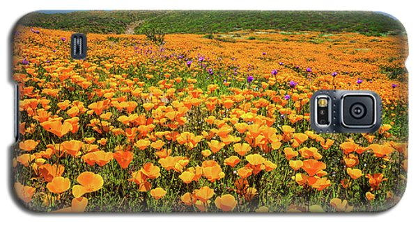 Walker Canyon Wildflowers Galaxy S5 Case