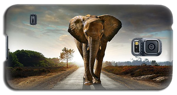 Walking Elephant Galaxy S5 Case