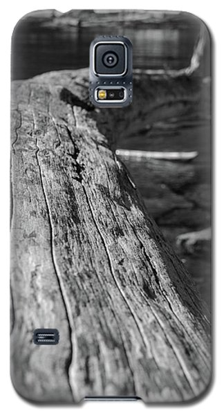 Walking On A Log Galaxy S5 Case