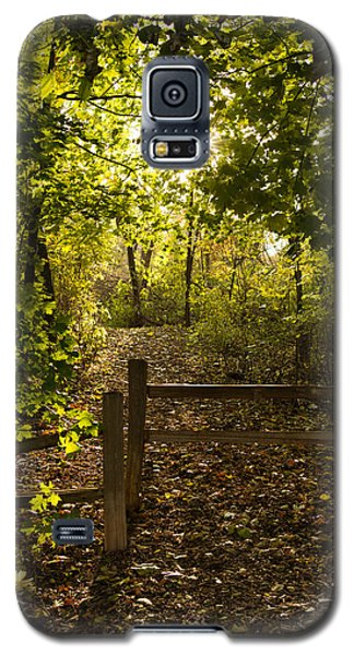 Walking Path Galaxy S5 Case