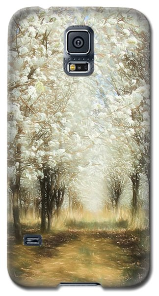 Galaxy S5 Case featuring the painting Walking Through A Dream Ap by Dan Carmichael
