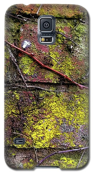 Wall Galaxy S5 Case by Anne Kotan