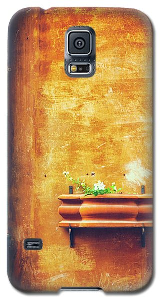 Galaxy S5 Case featuring the photograph Wall Gutter Vase by Silvia Ganora