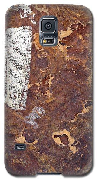 Wall In Puerto Rico Galaxy S5 Case